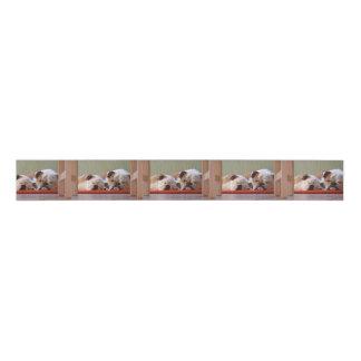 2 sleeping bulldogs.png grosgrain ribbon