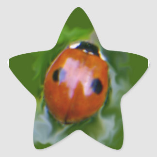 2-spot ladybug I Star Sticker