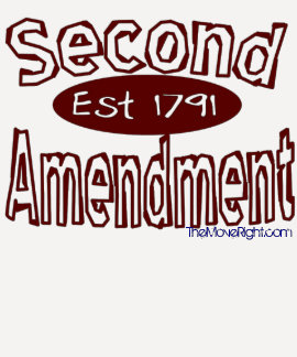 2nd Amendment, TheMoveRight.com Tee Shirt