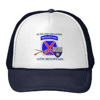 2ND BATTALION 22ND INFANTRY 10TH MOUNTAIN HAT