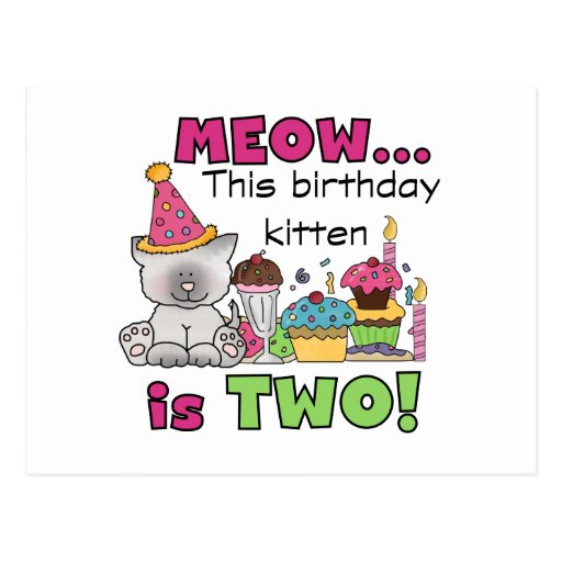 2nd Kitten Birthday Tshirts and Gifts Post Card