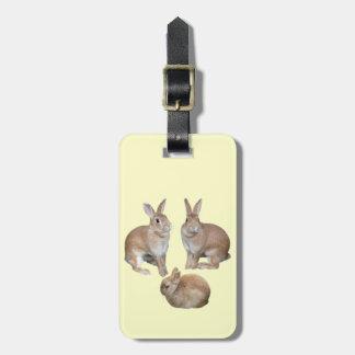 3匹 ウサギ ラゲッジネームタグ