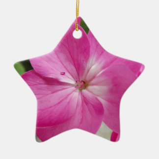30 (2).jpg ceramic star decoration