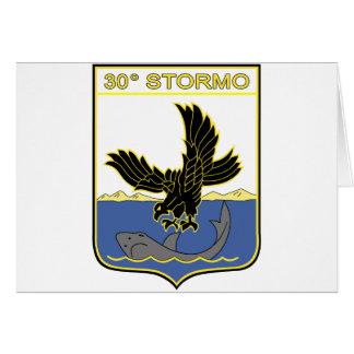 30o Stormo Greeting Card