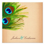 "311-Peacock Feather-Vintage Background 5.25"" Square Invitation Card"