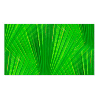 315941  GREEN PALM LEAVES DIGITAL REALISM BACKGROU PACK OF STANDARD BUSINESS CARDS