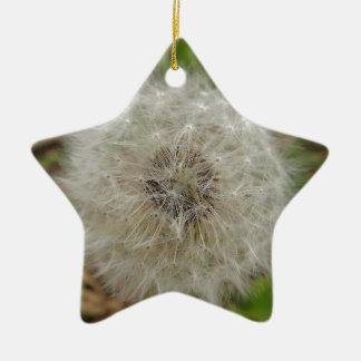 31.jpg christmas ornament