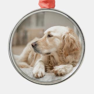 34137641_xxl christmas ornament
