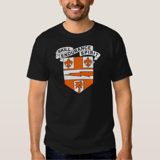 34th Signal Battalion - Skill Endurance Spirit T Shirt