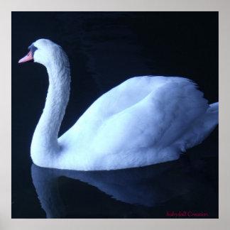 """35""""x35"""" Swan Print"""
