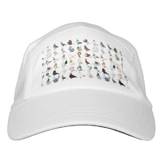 36 Pigeon Breeds Hat