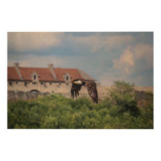 36x14 Bald Eagle passing Fort Ticonderoga Wood Print