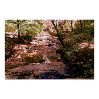 36x24 Poster - Photo River