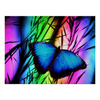 370729 RAINBOW DIGITAL BUTTERFLY REALISM BACKGROUN POSTER