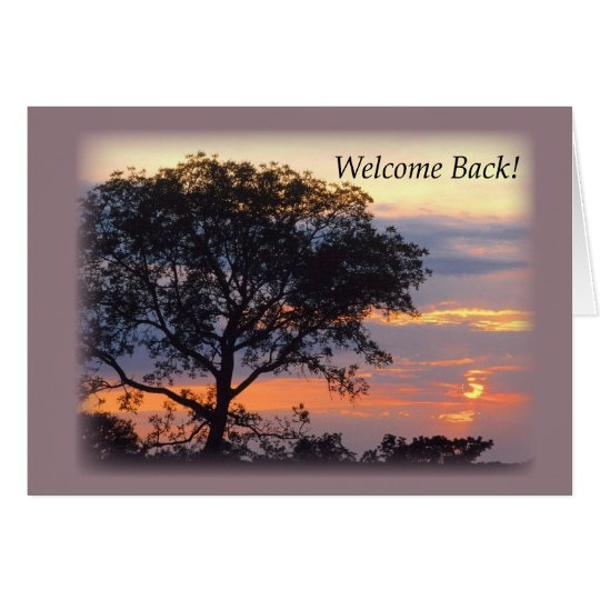 3748 Welcome Back Tree Sunset Card