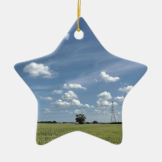 37.jpg christmas ornament