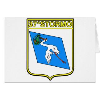 37o Stormo Greeting Card