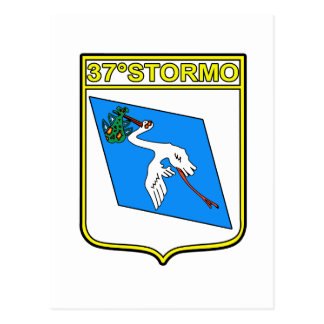 37o Stormo Postcard