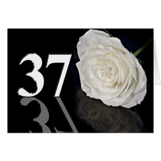 37th Birthday Card with a classic white rose