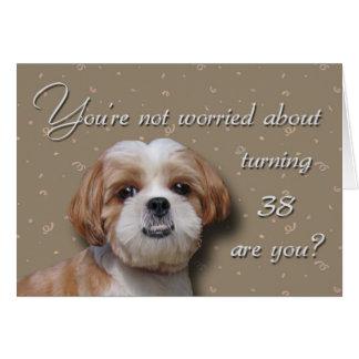 38th Birthday Dog Greeting Card