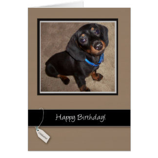 3913 Happy Birthday, Dog, Dachshund Greeting Card