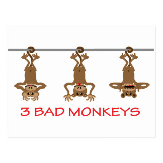 3 Bad monkeys Postcard