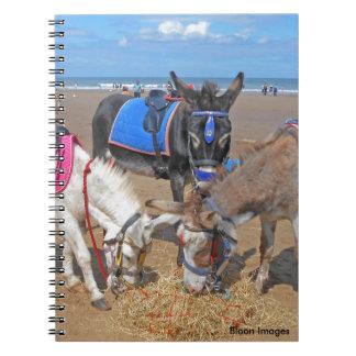 3 Donkeys Notebooks