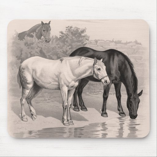 3 Horses, B&W Mousepads