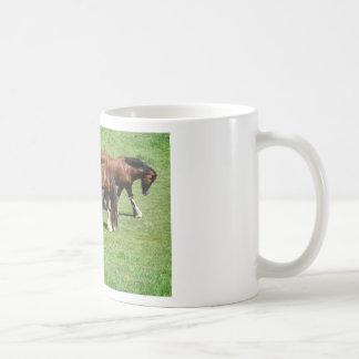 3 Horses on a Horse Farm Basic White Mug