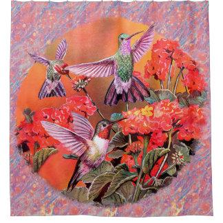 3 Hummingbirds Shower Curtain