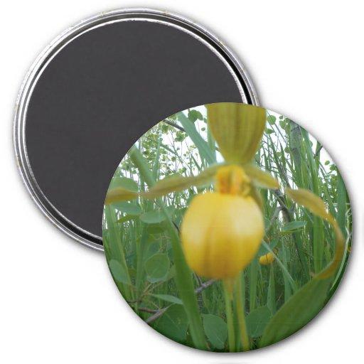 3 Inch Round Magnet