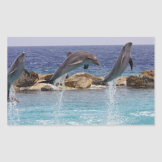 3 jumping dolphins rectangular sticker
