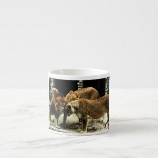 3 Lions Pushing their Heads Together Espresso Mug