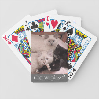 3 Little Kittens Photo Can we play Playing Cards