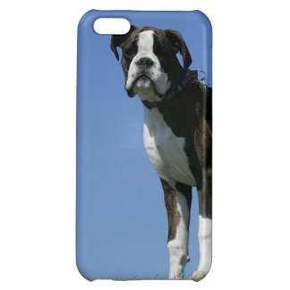 3 Month Old Boxer Puppy iPhone 5C Case