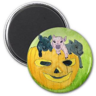 3 Pigs in a Pumpkin 6 Cm Round Magnet