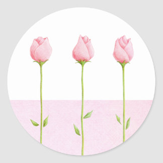 3 Pink Rosebuds Sticker