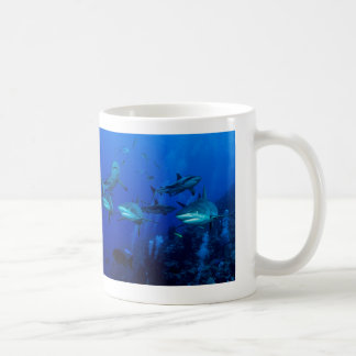 3 Reef Sharks on the Great Barrier Reef Coffee Mug