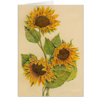 3 Sunflowers Greeting Card (Blank Inside)