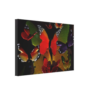 3D Butterflies flying together Stretched Canvas Print