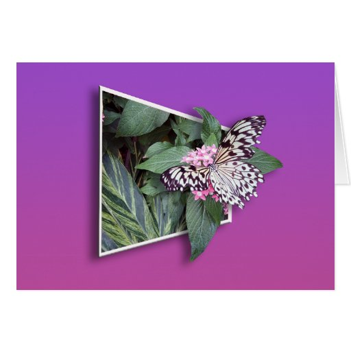 3d butterfly greeting card 1 zazzle for Christmas card 3d designs