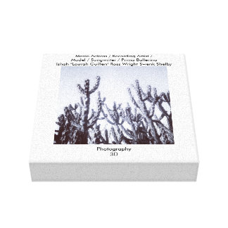 3D Cacti in Black and White Gallery Wrapped Canvas