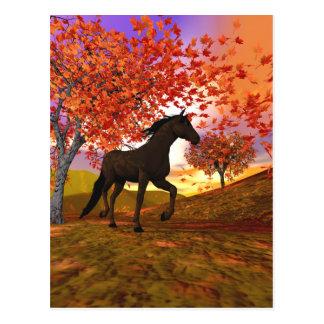 3d Fall Horse Postcard