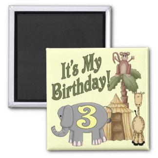 3rd Birthday Safari Square Magnet