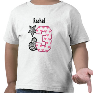 3rd Birthday Zebra Hearts Three Year Old 10B Shirt
