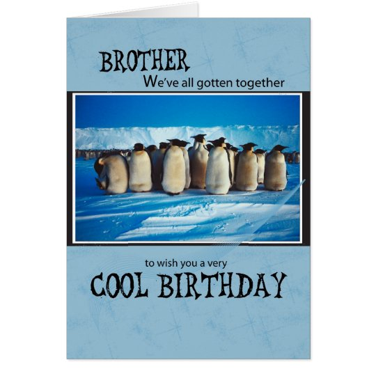 4093 Brother Penguin From Group Birthday Card