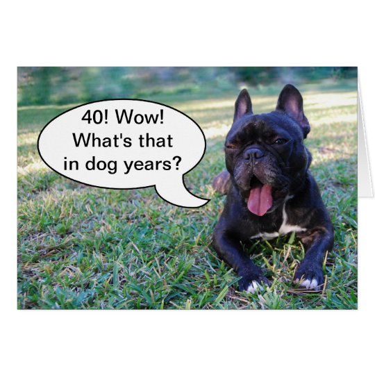 40th Birthday Dog Years French Bulldog Card