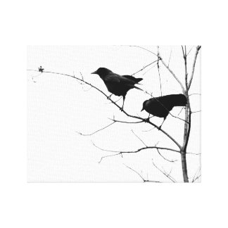42PlaidStars Two Crows on a Branch Canvas Print