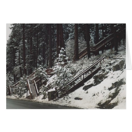 43. Staircases in the Snow, Donner Lake, CA Cards