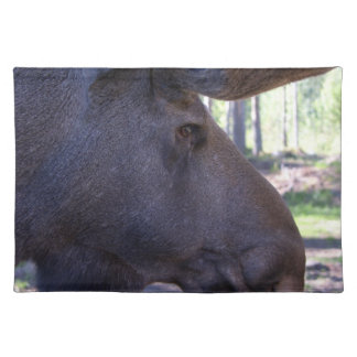45a Moose Placemat